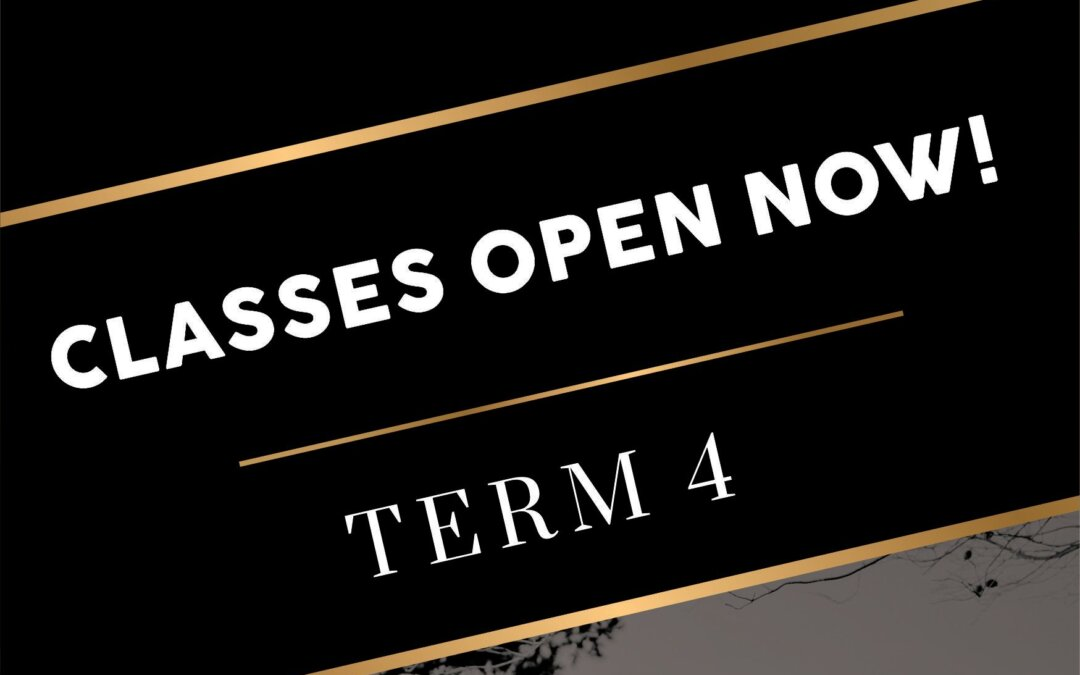 Term 4 Classes are up!!